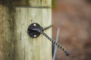 Using the Cordall Anchor Cleat in the vineyard (7)